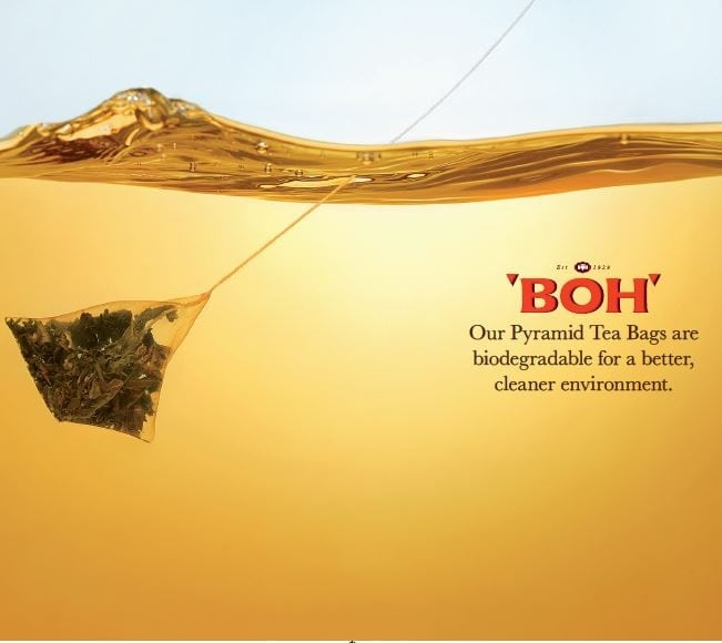 BOH pyramid bags are biodegradable.